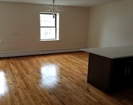 3 Bedrooms, Crown Heights Rental in NYC for $3,116 - Photo 1