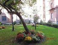 2 Bedrooms, Pelham Parkway Rental in NYC for $1,895 - Photo 1