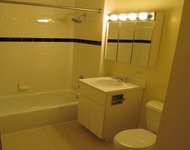 1 Bedroom, Two Bridges Rental in NYC for $2,995 - Photo 1