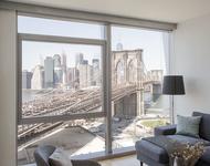 1 Bedroom, DUMBO Rental in NYC for $3,831 - Photo 1