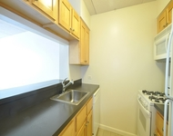 1 Bedroom, Two Bridges Rental in NYC for $2,850 - Photo 1