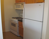 1 Bedroom, Two Bridges Rental in NYC for $2,750 - Photo 1