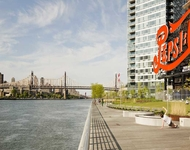 Studio, Hunters Point Rental in NYC for $2,545 - Photo 1