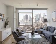 1 Bedroom, DUMBO Rental in NYC for $3,711 - Photo 1