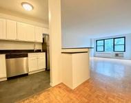 1 Bedroom, Flatbush Rental in NYC for $2,395 - Photo 1