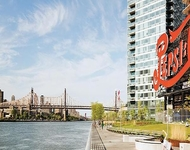 Studio, Hunters Point Rental in NYC for $2,999 - Photo 1