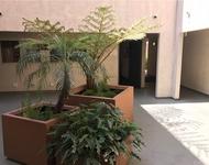 1 Bedroom, Warner Center Rental in Los Angeles, CA for $1,750 - Photo 2