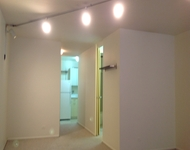 Studio, Park West Rental in Chicago, IL for $1,200 - Photo 2