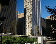 1 Bedroom, The Loop Rental in Chicago, IL for $1,560 - Photo 1