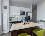 3 Bedrooms, Greektown Rental in Chicago, IL for $6,538 - Photo 1