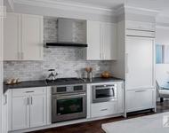 3 Bedrooms, Washington Square Rental in Boston, MA for $6,800 - Photo 1