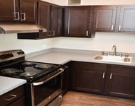 1 Bedroom, River North Rental in Chicago, IL for $1,610 - Photo 1