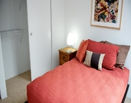3 Bedrooms, Streeterville Rental in Chicago, IL for $4,137 - Photo 2