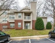 2 Bedrooms, Reston Rental in Washington, DC for $1,650 - Photo 1