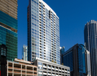 2 Bedrooms, Streeterville Rental in Chicago, IL for $3,200 - Photo 1
