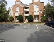 2 Bedrooms, Reston Rental in Washington, DC for $1,750 - Photo 1
