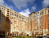 3 Bedrooms, Bethesda Rental in Washington, DC for $7,700 - Photo 2