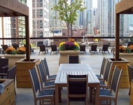 2 Bedrooms, Gold Coast Rental in Chicago, IL for $2,787 - Photo 1