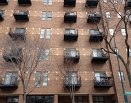 1 Bedroom, Hyde Park Rental in Chicago, IL for $1,550 - Photo 1