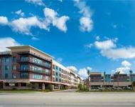 1 Bedroom, Uptown-Galleria Rental in Houston for $1,575 - Photo 1