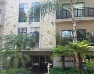 2 Bedrooms, Westwood Rental in Los Angeles, CA for $4,200 - Photo 1