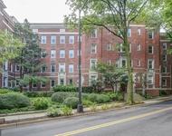 1 Bedroom, Lanier Heights Rental in Washington, DC for $1,495 - Photo 1