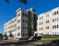 1 Bedroom, Neighborhood Nine Rental in Boston, MA for $2,800 - Photo 1