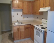 3 Bedrooms, Area IV Rental in Boston, MA for $2,900 - Photo 1