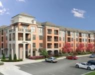 1 Bedroom, Sandy Springs Rental in Atlanta, GA for $1,375 - Photo 1
