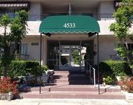 1 Bedroom, Sherman Oaks Rental in Los Angeles, CA for $1,800 - Photo 1