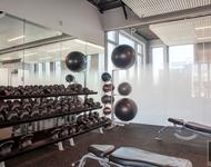 Studio, Williamsburg Rental in NYC for $3,322 - Photo 1