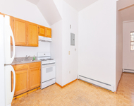 3 Bedrooms, East Williamsburg Rental in NYC for $2,550 - Photo 1