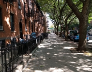 3 Bedrooms, South Slope Rental in NYC for $2,595 - Photo 1