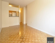 2 Bedrooms, Two Bridges Rental in NYC for $4,250 - Photo 1