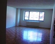 2 Bedrooms, Two Bridges Rental in NYC for $3,100 - Photo 2