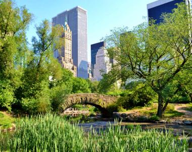 West 103rd Street & Central Park West - Photo Thumbnail 3