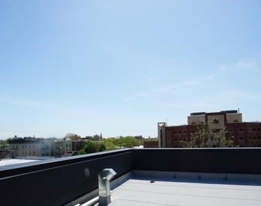 972 Greene Avenue - Photo Thumbnail 5