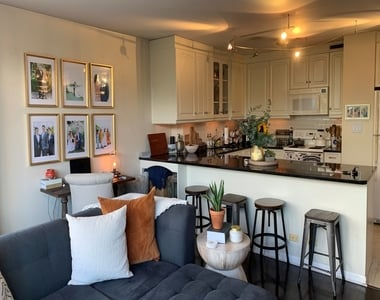 1360 North Sandburg Terrace - Photo Thumbnail 4