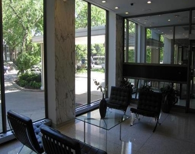 1360 North Sandburg Terrace - Photo Thumbnail 17