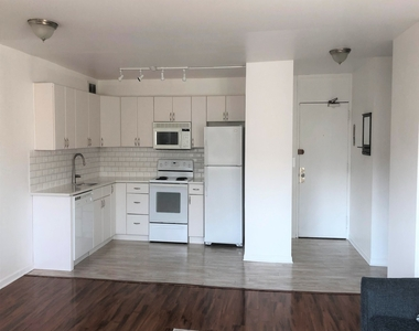 1255 North Sandburg Terrace - Photo Thumbnail 4