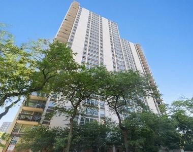 1255 North Sandburg Terrace - Photo Thumbnail 0