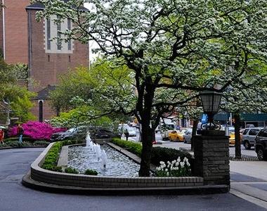 73RD STREET york avenue - Photo Thumbnail 4