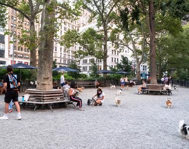 50 East 28th Street - Photo Thumbnail 41