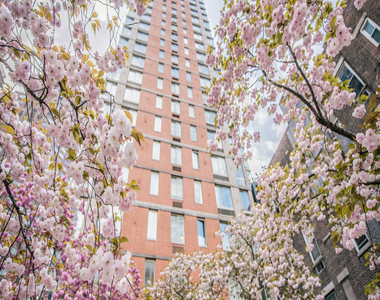 305 West 50th Street - Photo Thumbnail 0