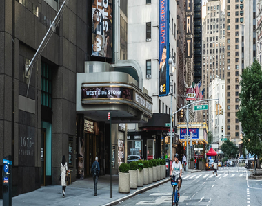 305 West 50th Street - Photo Thumbnail 41