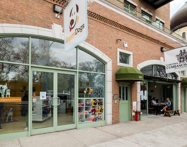 239 North 9th Street - Photo Thumbnail 29