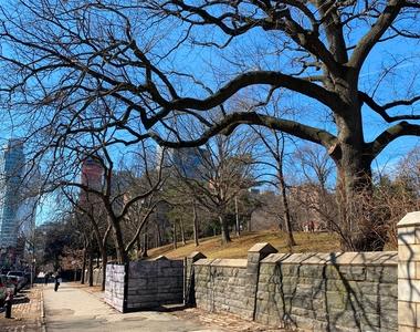 Fort Greene Park - Photo Thumbnail 11