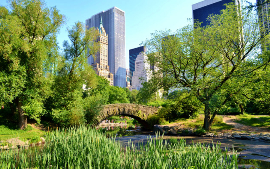 West 103rd Street & Central Park West - Photo 3