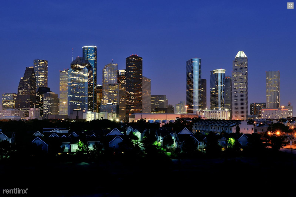 1712 W Dallas St - Photo 4