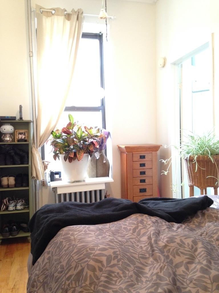 753 East 6th Street, New York, NY 10009 - Photo 6